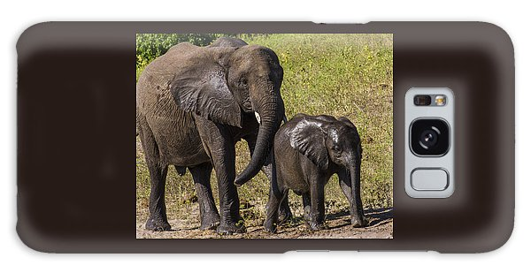 Elephant Mom And Baby Galaxy Case