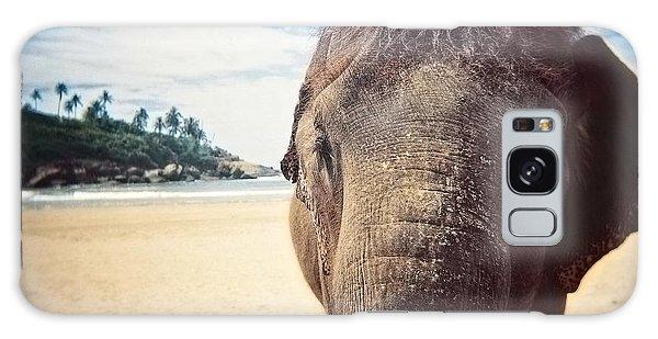 Elephant On The Beach Galaxy Case