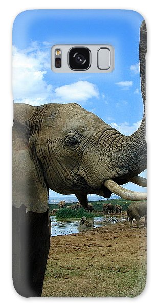 Elephant Posing Galaxy Case