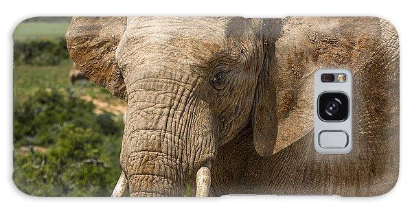 Elephant Profile Galaxy Case