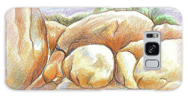 Elephant Rocks State Park II  No C103 Galaxy Case