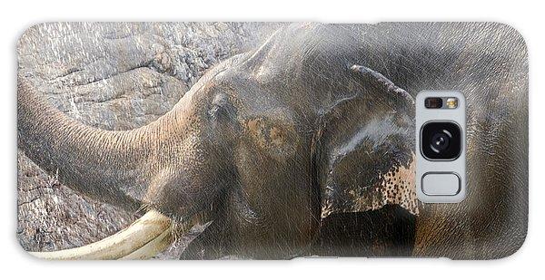 Elephant Shower Galaxy Case