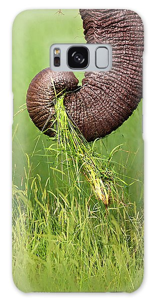 Close Up Galaxy Case - Elephant Trunk Pulling Grass by Johan Swanepoel