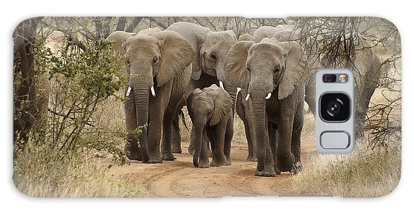 Elephants Have The Right Of Way Galaxy Case