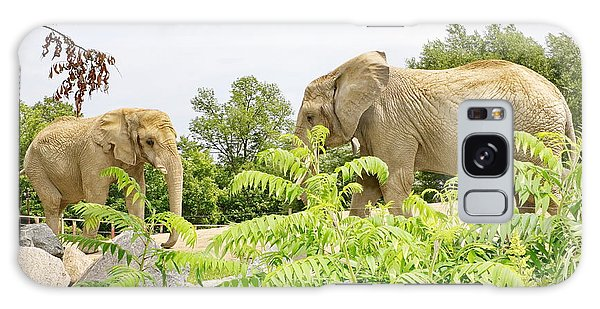 Elephants Thika And Toka At The Toronto Zoo Galaxy Case
