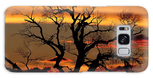 Galaxy Case featuring the photograph Elgin Sunset by Beverly Parks