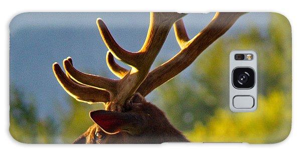 Elk At Sunset Galaxy Case
