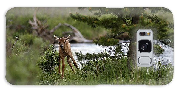 Elk Calf Galaxy Case