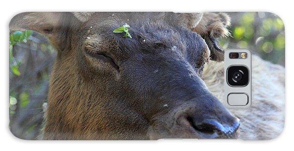 Elk Chuckle Galaxy Case