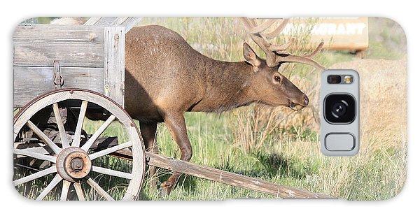 Elk Drawn Carriage Galaxy Case