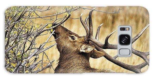 Elk Portrait Galaxy Case by Catherine Fenner