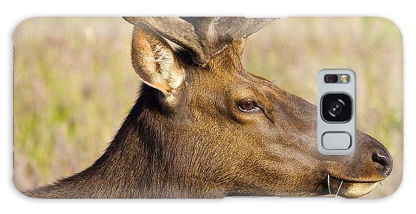 Elk Profile Galaxy Case by Todd Kreuter