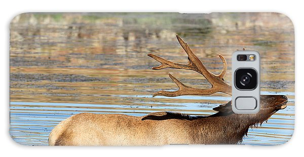 Elk Cooling Down In Lake Galaxy Case