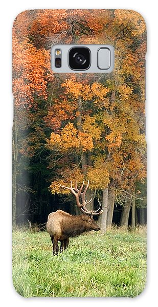 Elk With Autumn Colors Galaxy Case