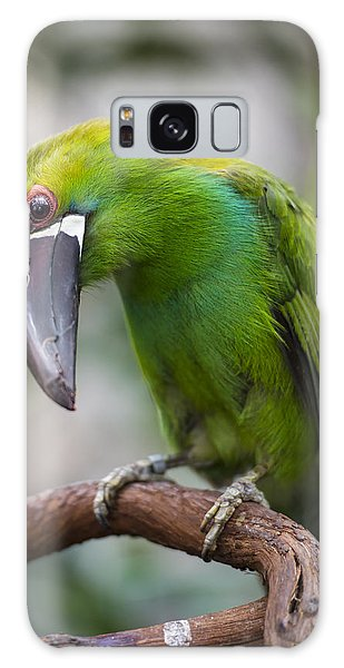 Emerald Toucanet Galaxy Case