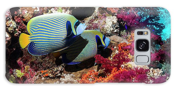 No-one Galaxy Case - Emperor Angelfish On A Reef by Georgette Douwma