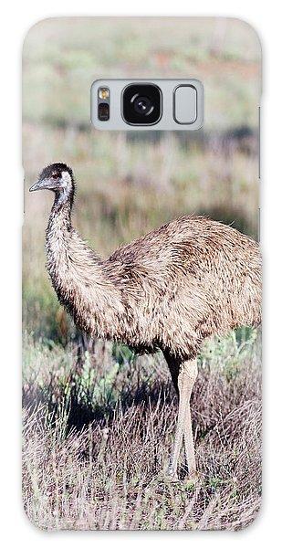 Emu (dromaius Novaehollandiae Galaxy Case by Martin Zwick