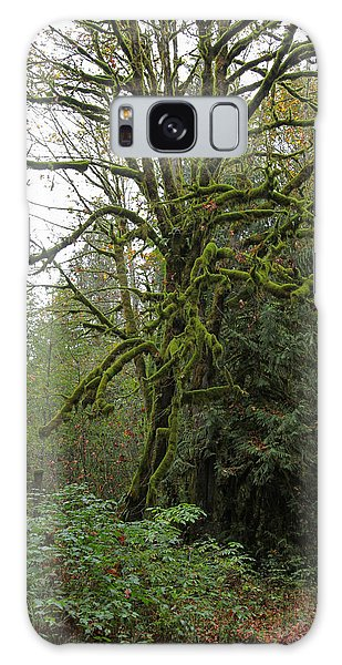 Enchanted Tree Galaxy Case