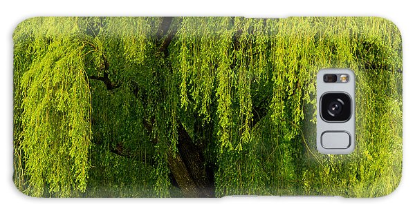 Enchanting Weeping Willow Tree  Galaxy Case