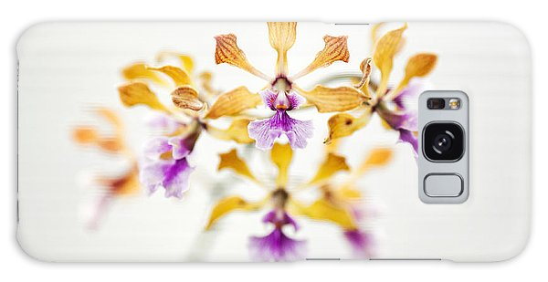 Orchidaceae Galaxy Case - Encyclia Orchid by Tim Gainey