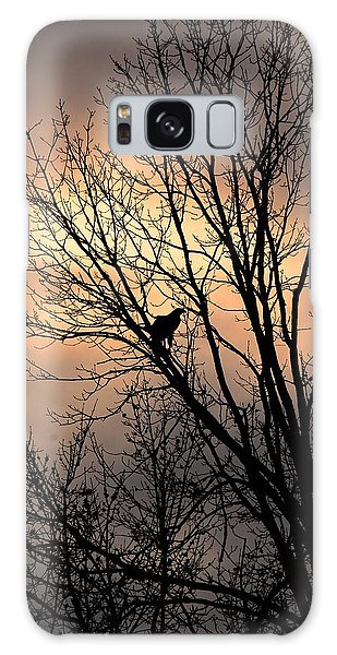 End Of The Day  Red Tailed Hawk Galaxy Case