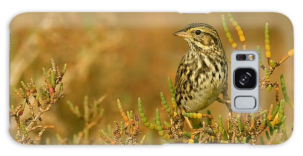 Endangered Beldings Savannah Sparrow - Huntington Beach California Galaxy Case by Ram Vasudev