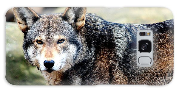 Endangered Red Wolf Galaxy Case