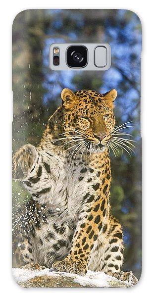 Endantered Leopard Galaxy Case