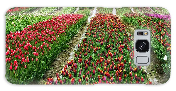 Endless Waves Of Tulips Galaxy Case