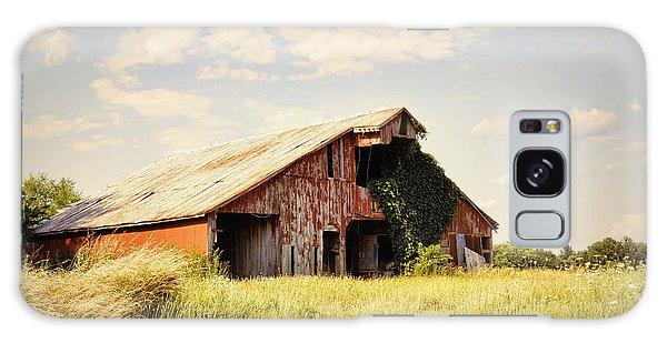 Englewood Barn Galaxy Case