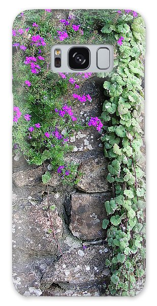 English Garden Wall Galaxy Case by Bev Conover