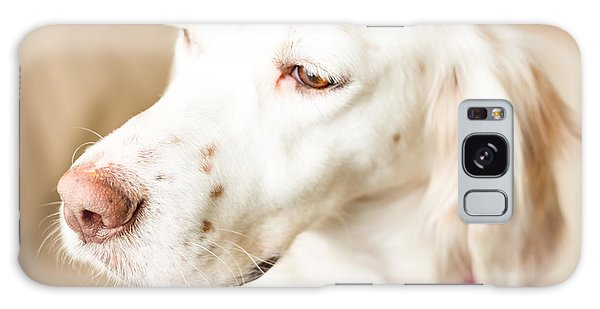 English Setter In Natural Light Galaxy Case