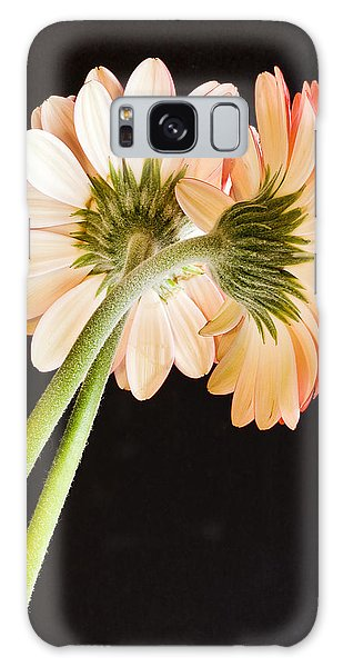 Entwined Galaxy Case