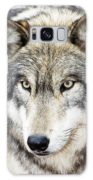Essence Of Wolf Galaxy Case by Gary Slawsky