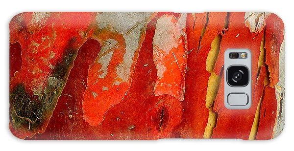 Eucalyptus Bark Galaxy Case by Peter Mooyman