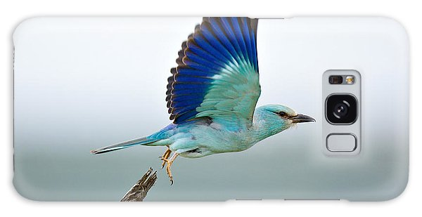 Bird Galaxy Case - Eurasian Roller by Johan Swanepoel