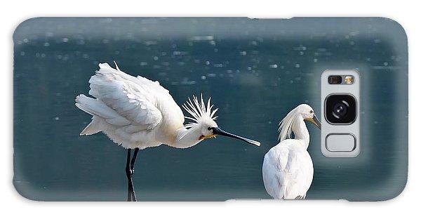 Eurasian Spoonbill Courtship Display Galaxy S8 Case