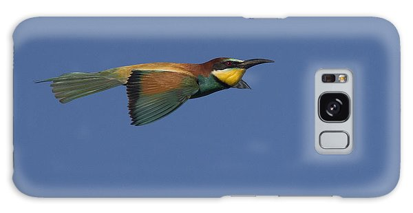 European Bee-eater Galaxy Case