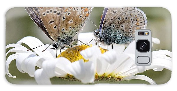 European Common Blue Butterflies Galaxy Case
