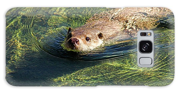 Otter Galaxy Case - European Otter by Duncan Shaw/science Photo Library