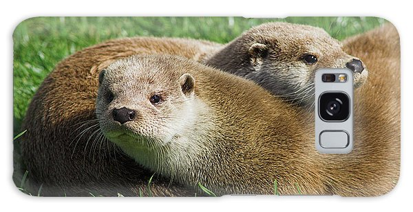 Otter Galaxy Case - European Otters by Duncan Shaw/science Photo Library