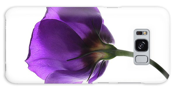 Eustoma Grandiflorum. Galaxy Case