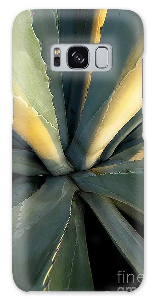 Evening Agave Galaxy Case by Ellen Cotton