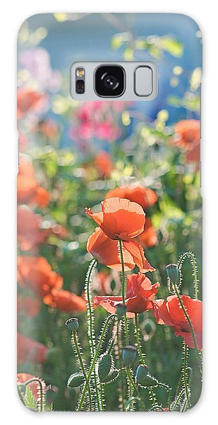 Evening Lights The Poppies Galaxy Case