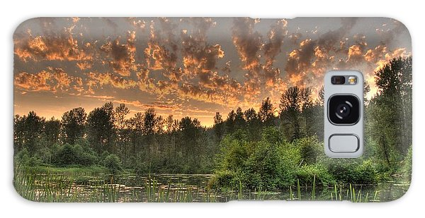 Evening Pond Galaxy Case by Jeff Cook