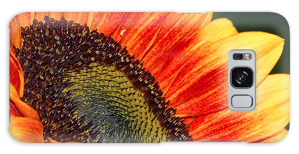 Evening Sun Sunflower Galaxy Case