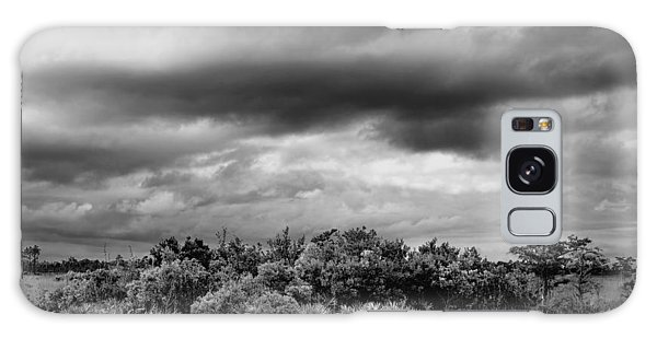 Everglades Storm Bw Galaxy Case