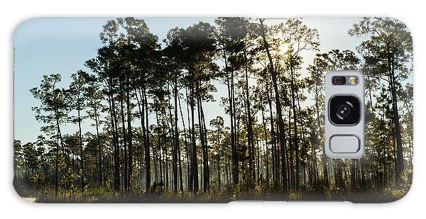 Everglades Sunrise Galaxy Case
