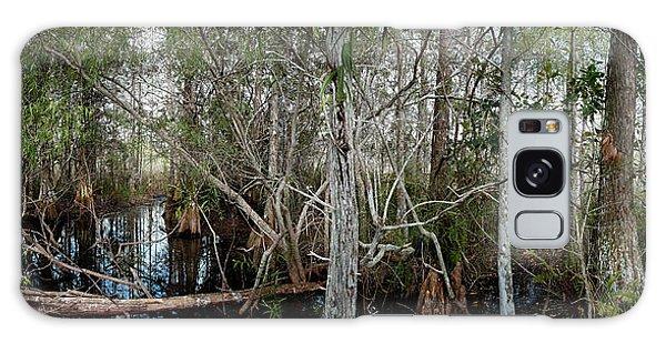 Everglades Swamp-1 Galaxy Case