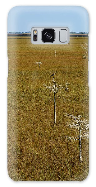 Everglades View Galaxy Case by Daniel Woodrum